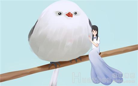 七夕情话短语留言大全